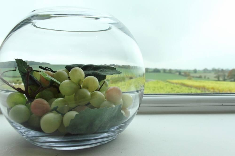 visiting halfpenny green vineyards