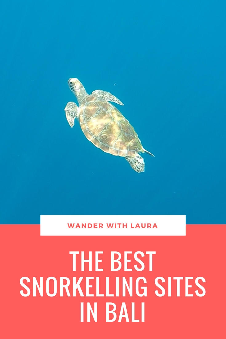 The Best Snorkelling Spots in Bali | Wander with Laura