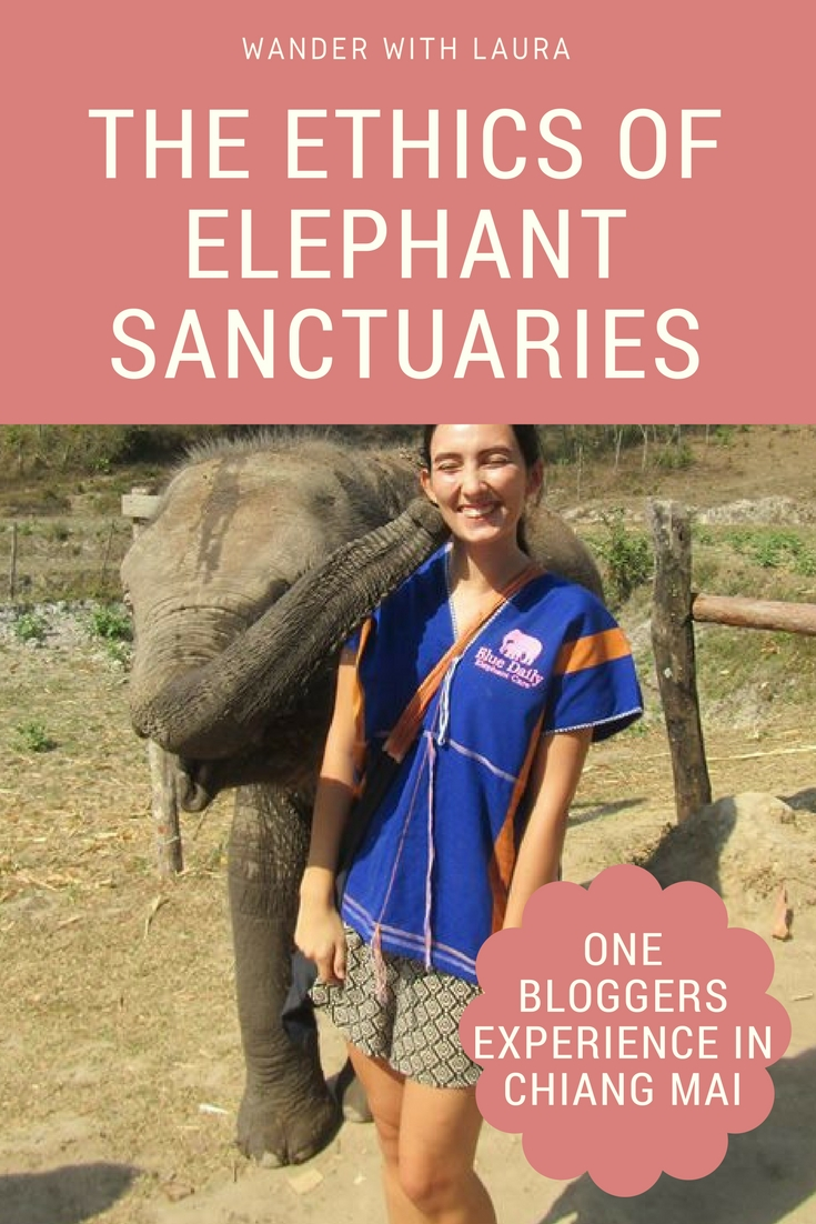 The Ethics of Elephant Sanctuaries in Chiang Mai | Wander with Laura