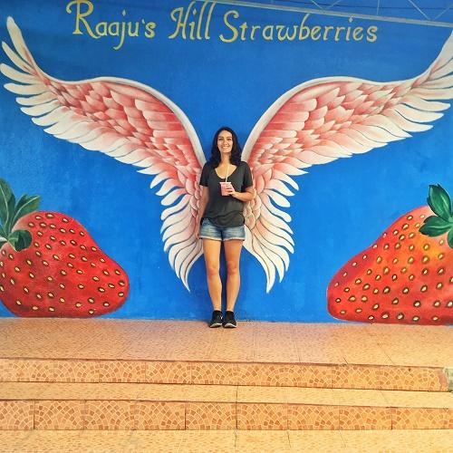 Strawberry Farm Cameron Highlands