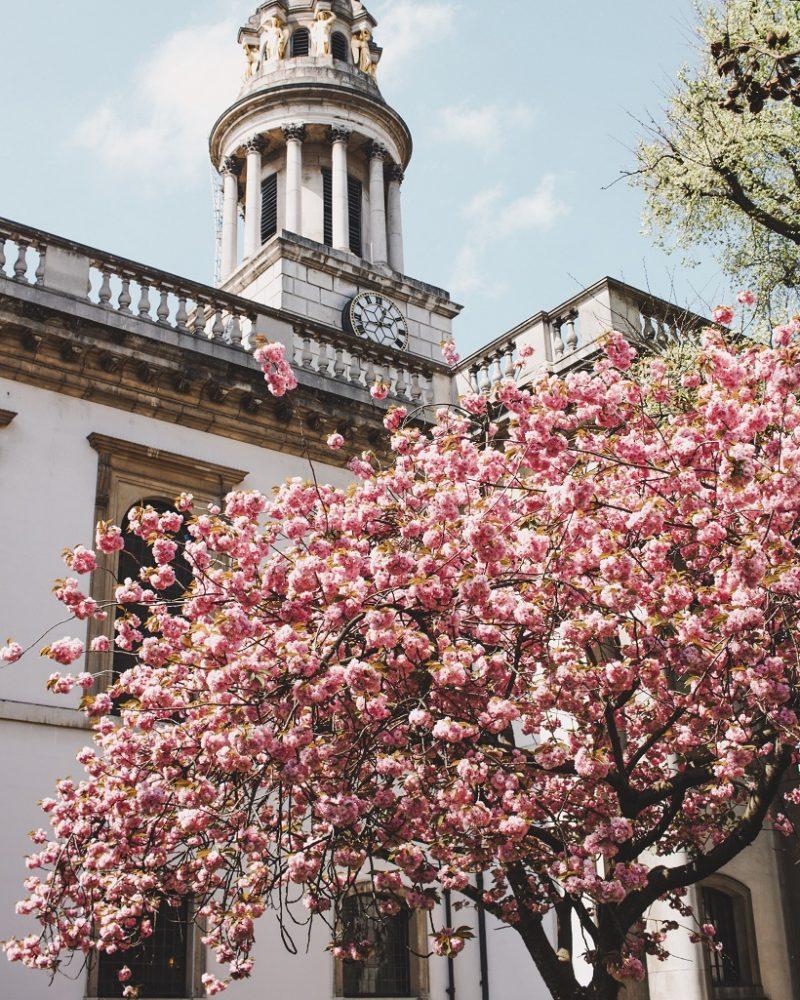 Marylebone in Spring