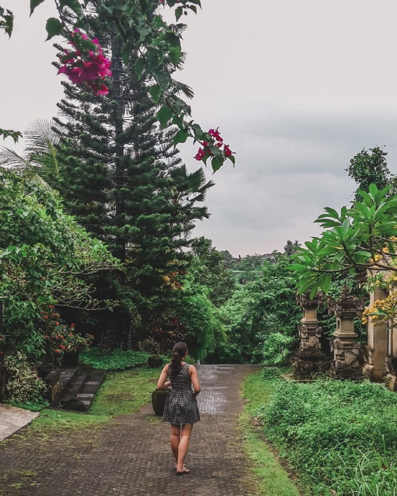 Ubud Bali walk