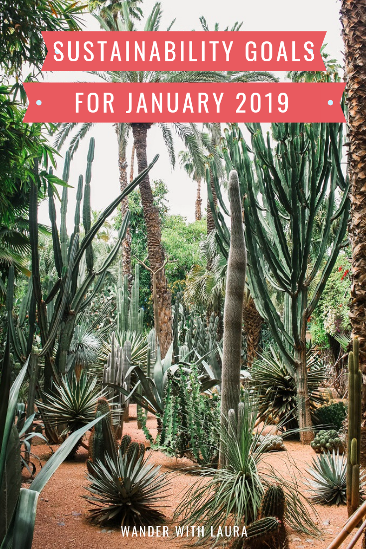 Sustainability goals for January 2019