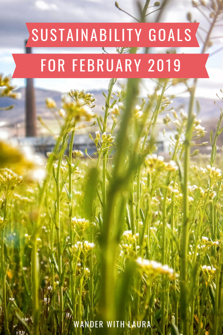 Sustainability goals for February 2019