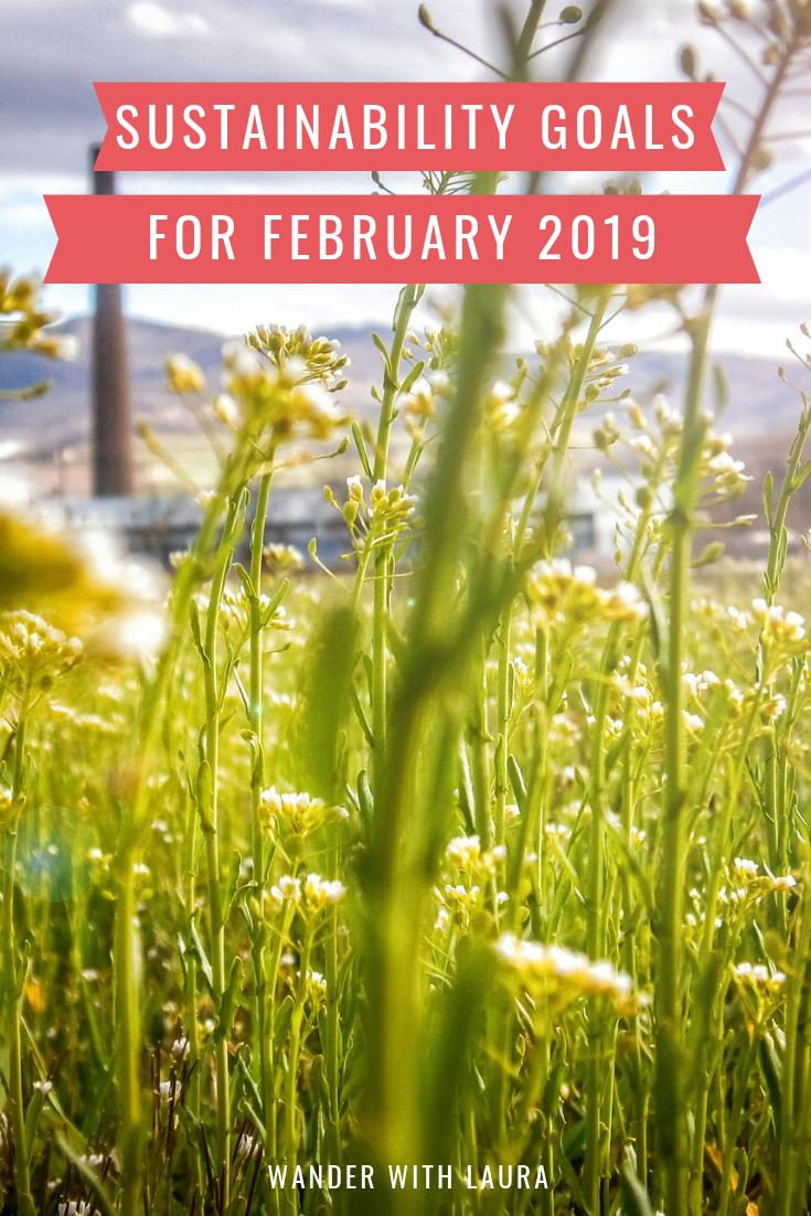Sustainability goals for February 2019