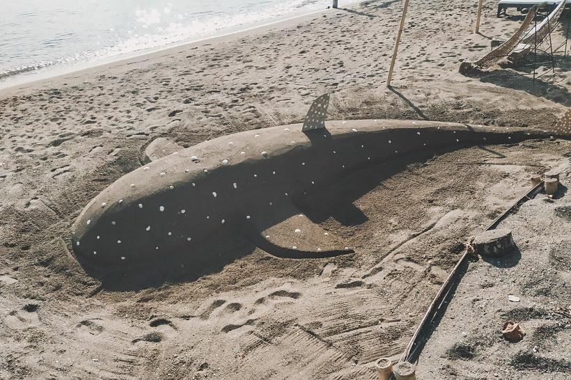 Whale shark in sand at Elysia Beach Resort