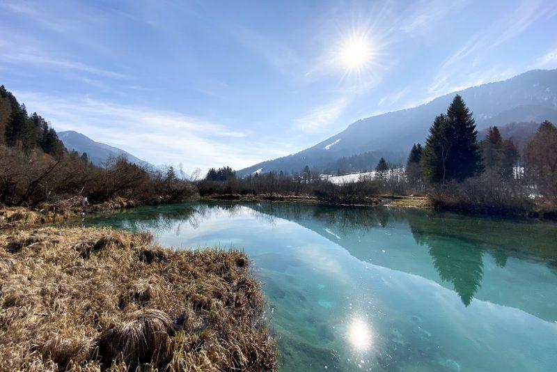 Lake Zelenci Slovenia