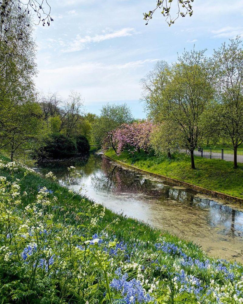Sefton Park Liverpool in spring